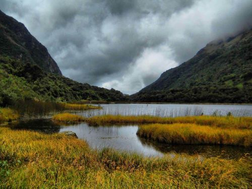 Nationale parken van Ecuador: El Cajas Nationaal Park is een wetland met 270 meren en plasjes.