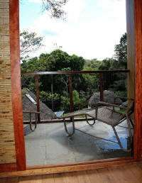 .Cuyabeno Nature Reserve: View from the Deluxe Bedrooms at the Cuyabeno Lodge.