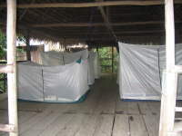 Climate in the Amazon of Ecuador: During flooding, many lodges in Cuyabeno become inundated with mosquitos.