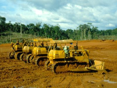 AMAZON RIVER HISTORY & INTERESTING FACTS [ECUADOR]: new oil exploitation service areas created in and around Cuyabeno in the early 80s.